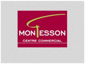 logo-montesson